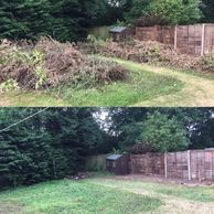 Garden clearance, site clearance