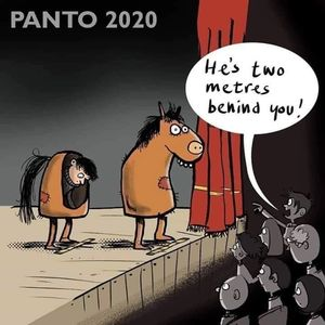 Covid pantomime 2020