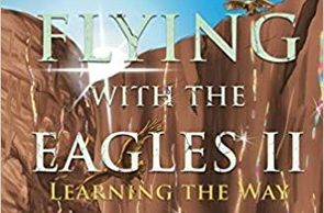 flying with the eagles 2 book cover
