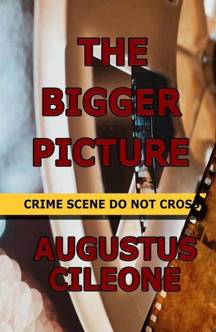 Book two The Bigger Picture written by Augustus Cileone, published by Sage Words Publishing.