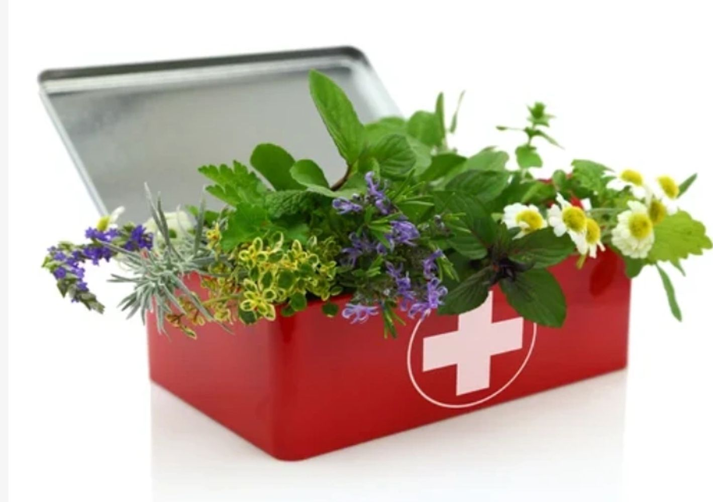 Herbal Health Virtual Conference - 2021