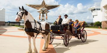 Horse and Carriage Daytona Beach Fl