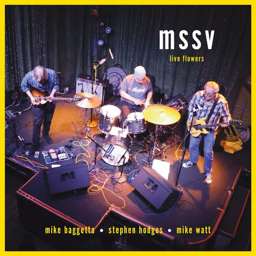 mssv (Mike Baggetta, Stephen Hodges, Mike Watt) Live Flowers album cover