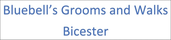 Bluebell's                     GroomS AND Walks      bicester