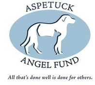 Aspetuck Angel Fund, Inc.