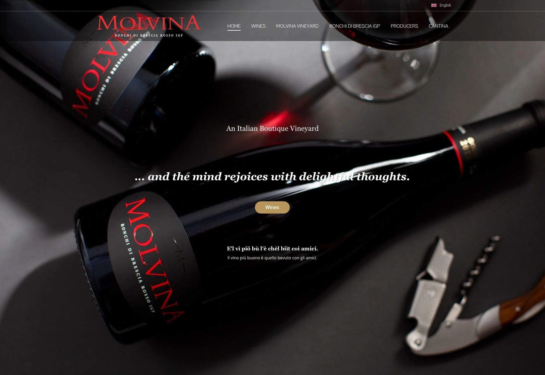 Award winning intense fine red wine. Molvina Wine high quality wine and for  Italian artisan