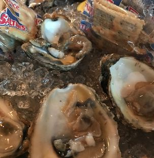 Oysters Oyster Roasts