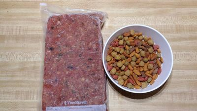 Raw pet food next to kibble.