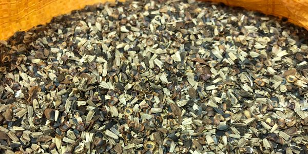 Pure live seed native pollinator seed blend Missouri and heartland native seeds for quail pheasants