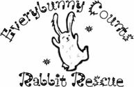 Everybunny Counts Rabbit Rescue