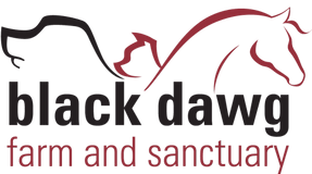 Black Dawg Farm And Sanctuary