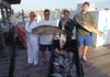 nice groupers and a cart full of triggerfish