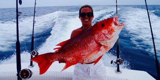 red snapper caught on the miss ginger out of orange beach al    Deep sea fishing alabama