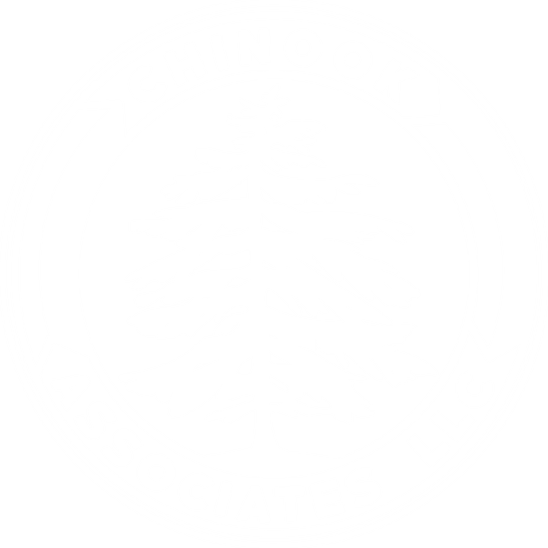 Chinook Associates LLC
