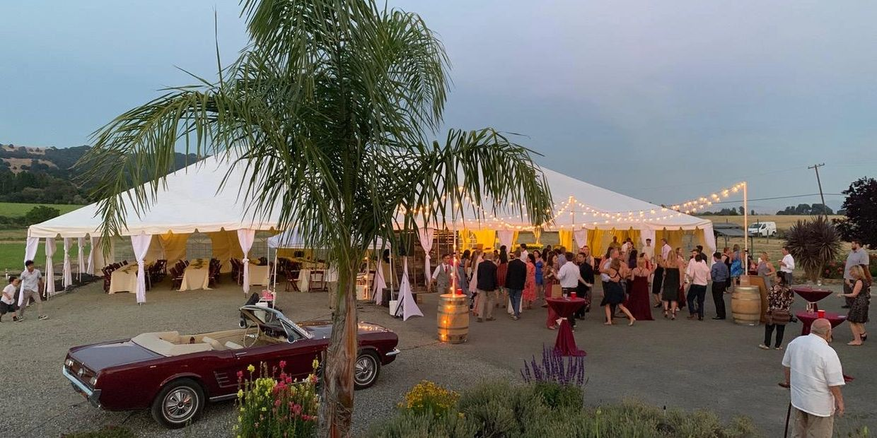 wedding event at GV Cellars