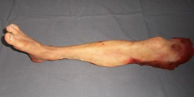 Fake Severed Leg