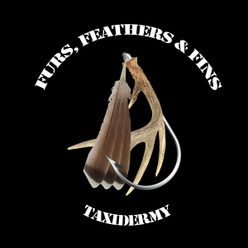 Furs, Feathers & Fins Taxidermy