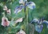 BLUE IRIS AND ROSES