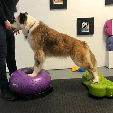 Brooklyn learns foot placement and balance