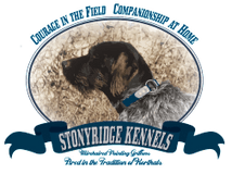 Stonyridge Kennels