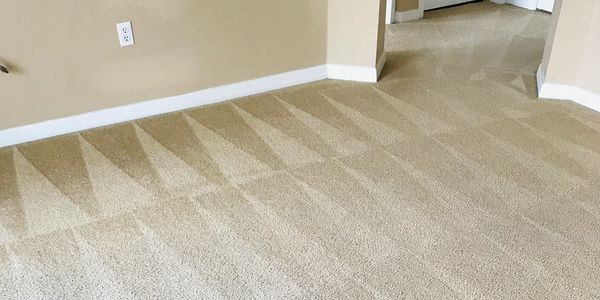 carpet cleaning st. cloud, fl