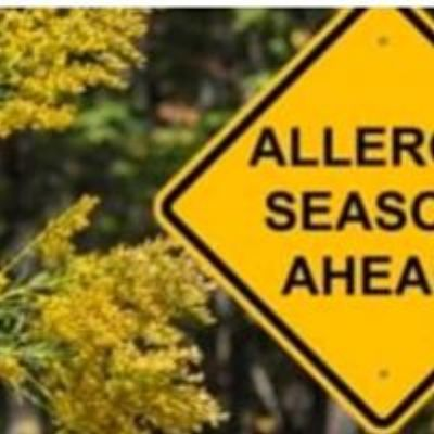 Pollen from oak trees and other plants in the Port Saint Lucie area can wreak havoc on sinuses.