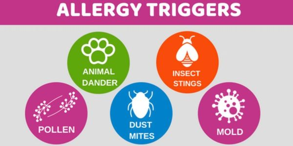 Allergy Triggers: Pets, Pollen, Venom, Mold and Dust mites