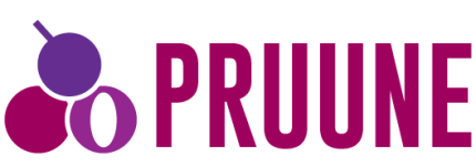 Pruune Consulting Ltd