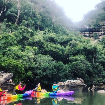 kayak tour hawkesbury river sydney bay sports sit on top