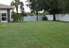 2015 Florida lawn work by Nuzzo Lawn and Forest Care
