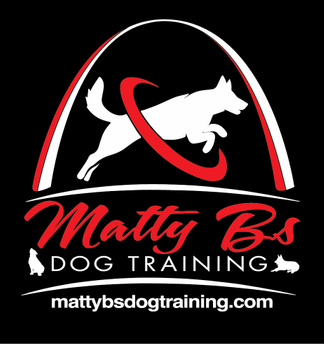 Matty B's Dog Training
