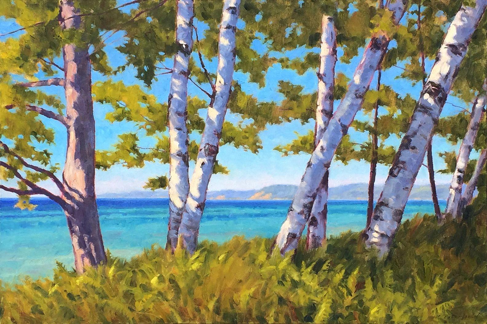 Birch above the shore, 24 x 36