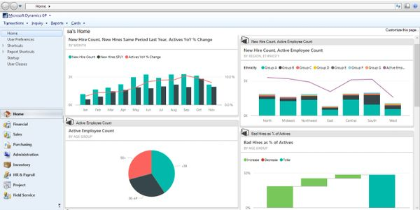 Our Power Pack Dashboards Pin to your Dynamics GP Homepage