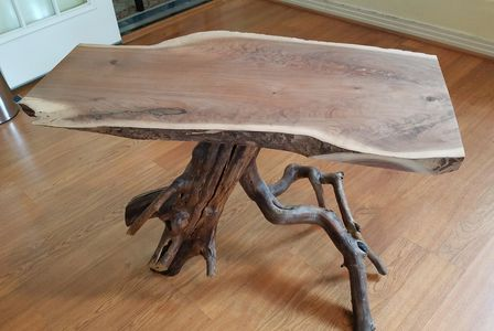 Coffee Table: Walnut Slab with Texas Persimmon base