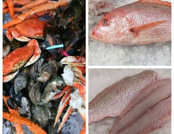 fresh seafood, fresh clams, fresh oysters, seafood wholesale, seafood market, fresh fish, lobster