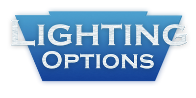 Section title for Lighting Options