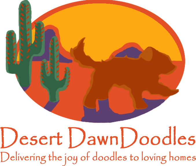 Desert Dawn Doodles - Puppies for Sale, Goldendoodle, Dog