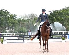 Dressage competitions in Ocala Florida and Wellington Florida