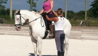 Dressage riding lessons and coaching for all levels and ages.