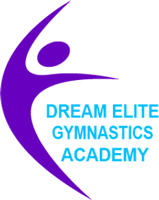 Dream Elite Gymnastics Academy