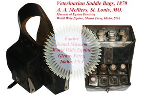 Veterinarian Saddle Bags, 1870 in World Wide Equine's Dental Museum