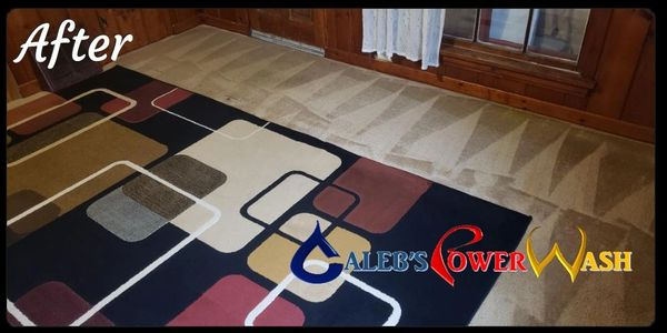 Carpet Cleaning Oswego IL