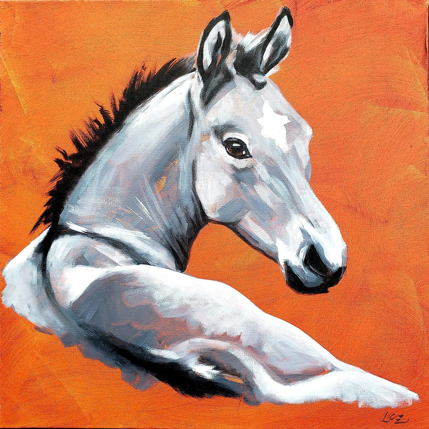 "Gray Colt | 20"" x 20"" x 2"" 