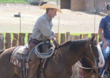 Horse trainer. Comintment to clients. Mission statement