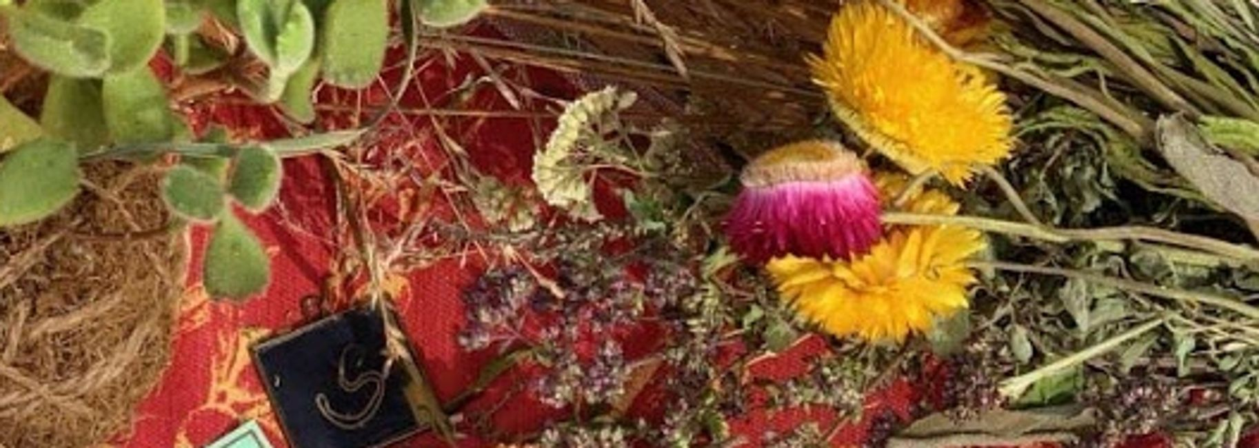 Dried organic strawflower, lavender and yarrow lie bunched on a colorful market table.