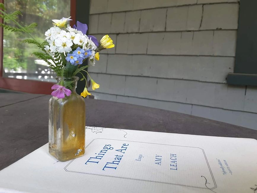 A tiny bouquet of spring flowers in a small glass vase on a paperback  on a porch, on a sunny day.