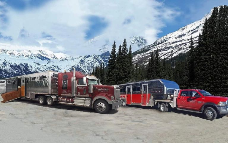 Horse transport in British Columbia