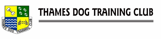 Thames Dog Training Club