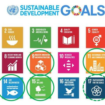 8 of the top United Nation Sustainability Goals are covered by the Zero Pollution Network