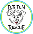 Fur Fun Rescue
